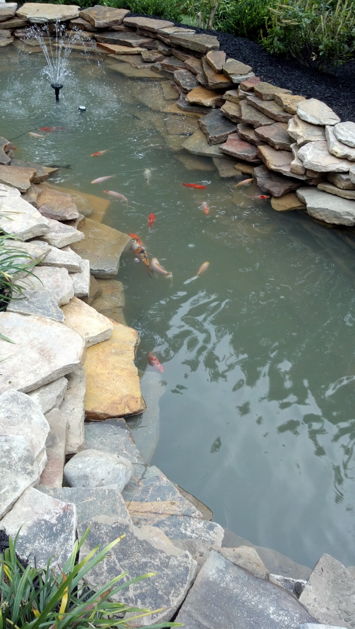 Ourdoor pond design Chaddsford PA